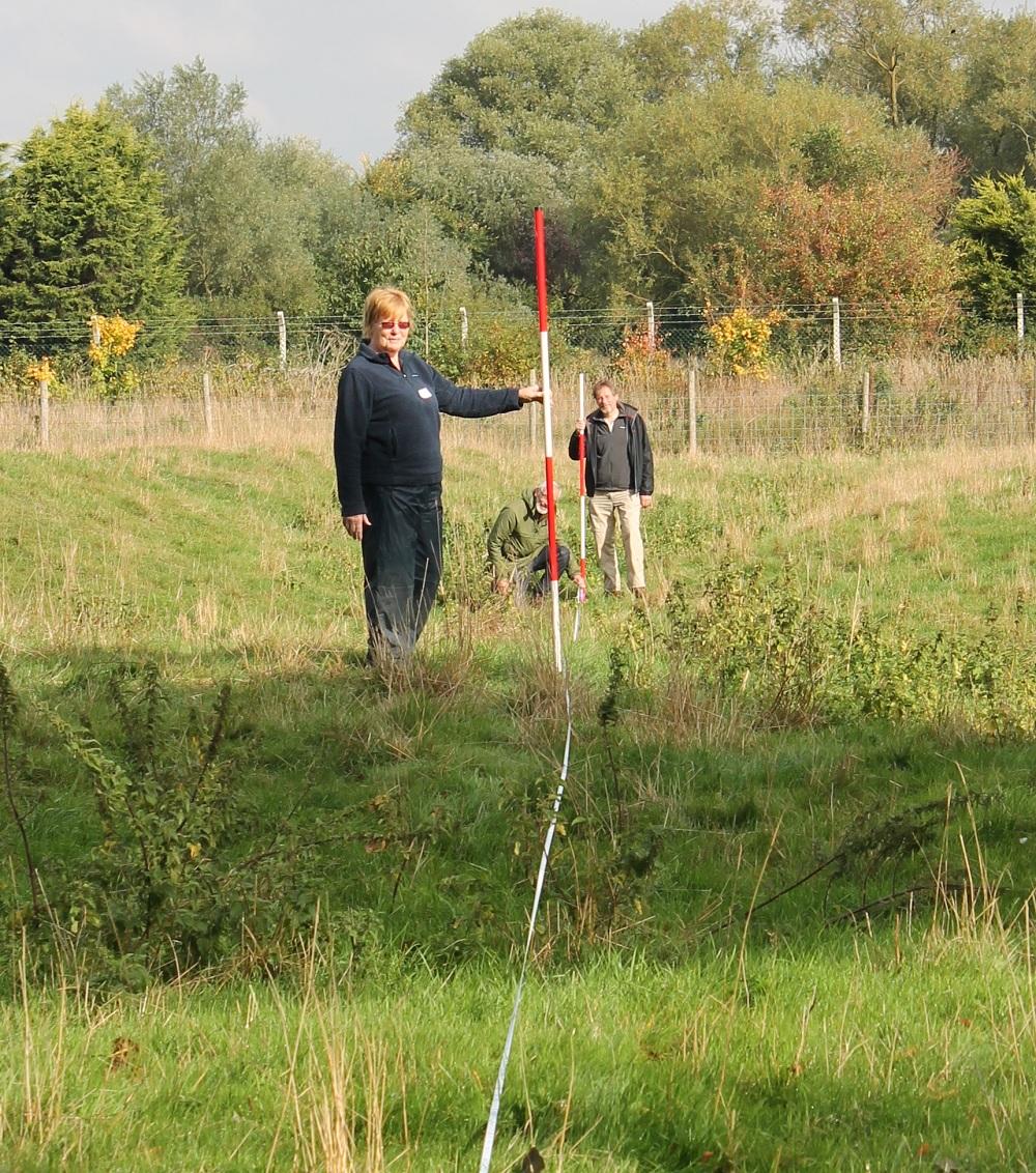 Landscape survey courses